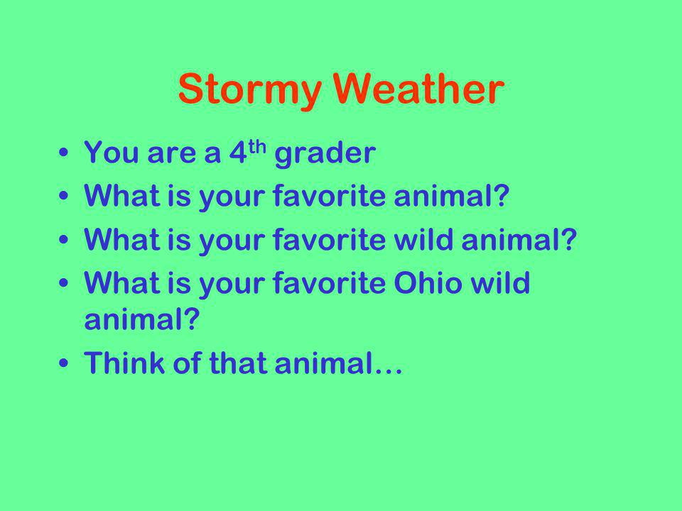 Stormy Weather You are a 4th grader What is your favorite animal