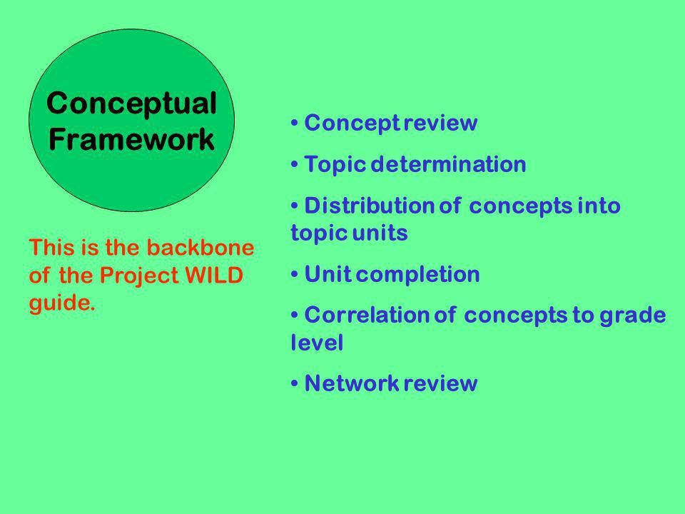 Conceptual Framework Concept review Topic determination