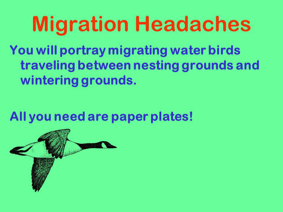 Migration Headaches You will portray migrating water birds traveling between nesting grounds and wintering grounds.