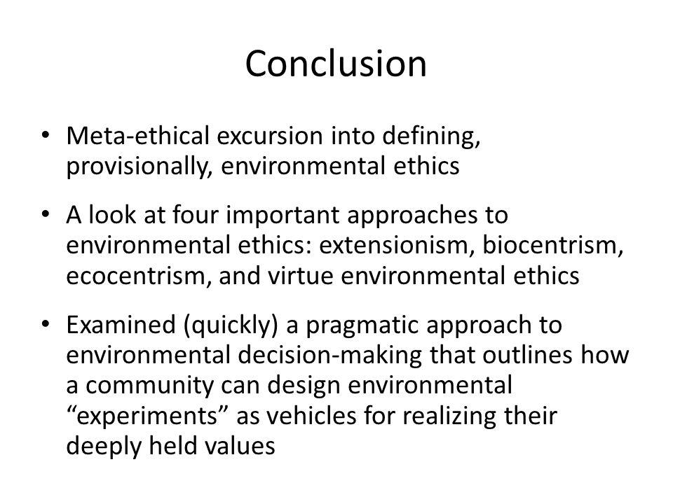 Conclusion Meta-ethical excursion into defining, provisionally, environmental ethics.