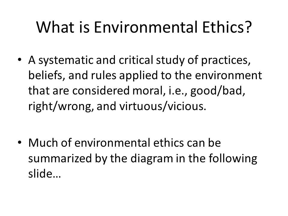 What is Environmental Ethics