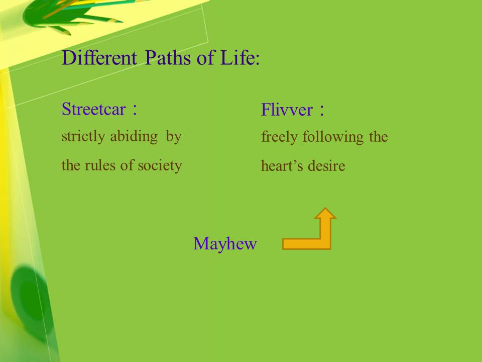 Different Paths of Life: