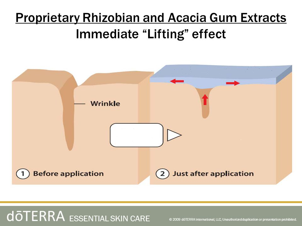Proprietary Rhizobian and Acacia Gum Extracts
