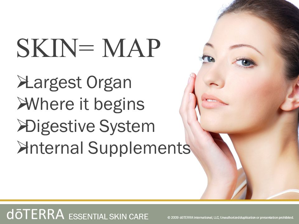 SKIN= MAP Largest Organ Where it begins Digestive System