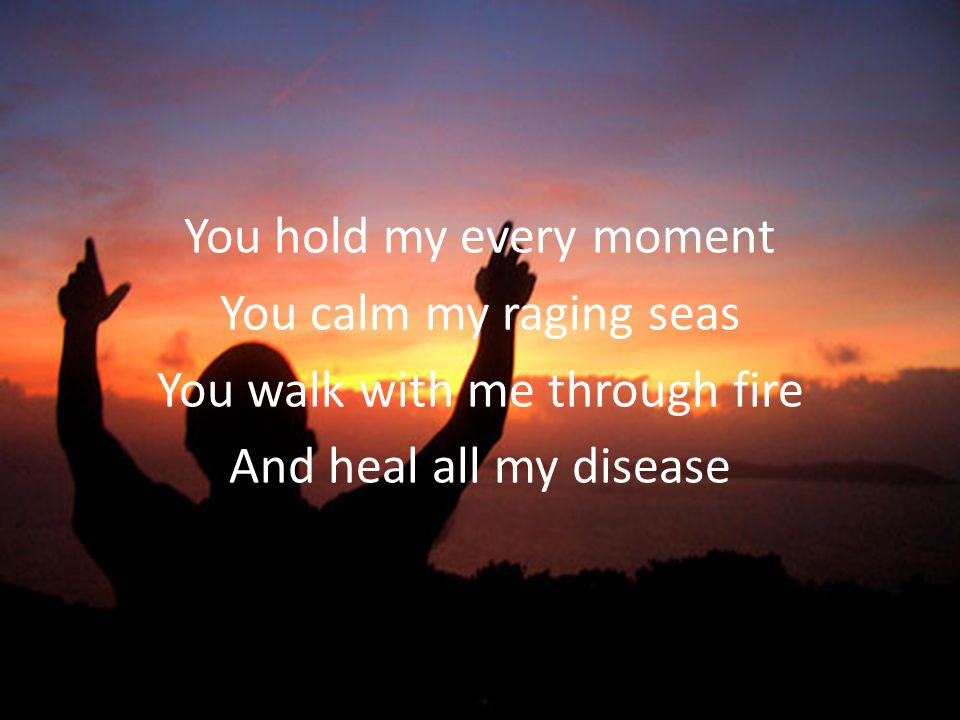 You hold my every moment You calm my raging seas You walk with me through fire And heal all my disease
