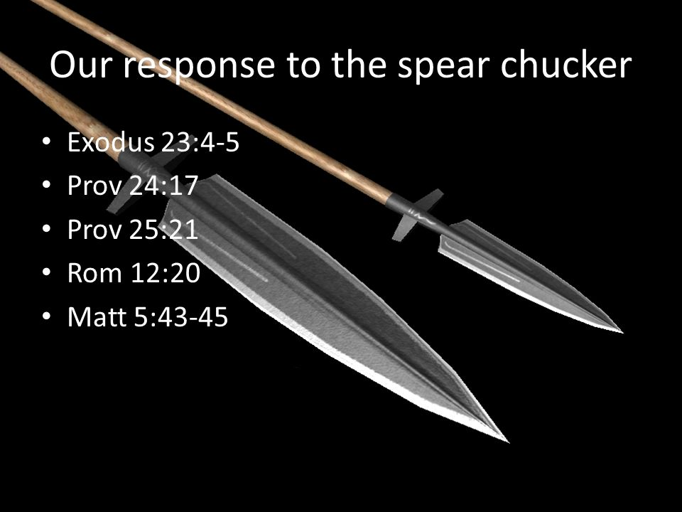 Our response to the spear chucker