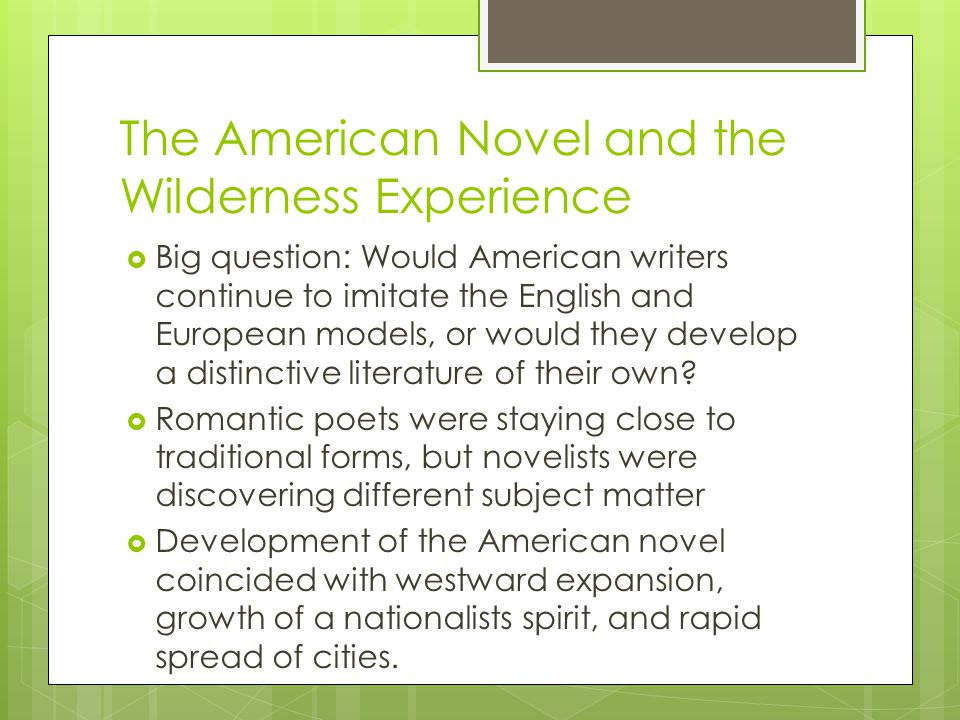 The American Novel and the Wilderness Experience