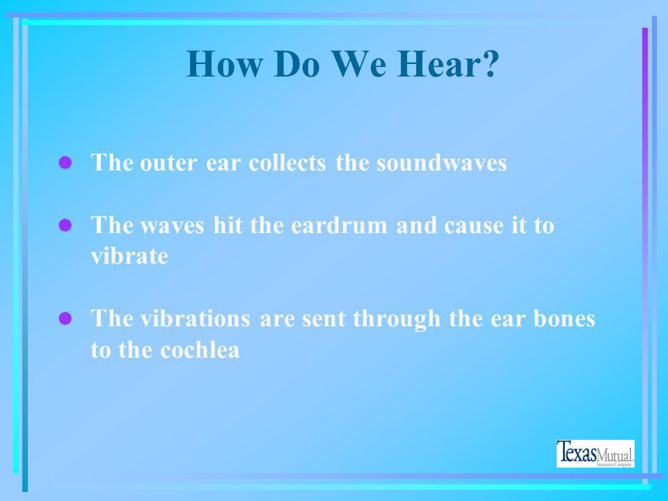 How Do We Hear The outer ear collects the soundwaves