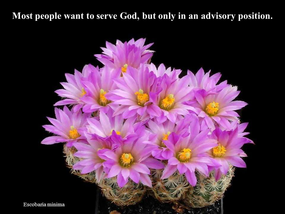 Most people want to serve God, but only in an advisory position.