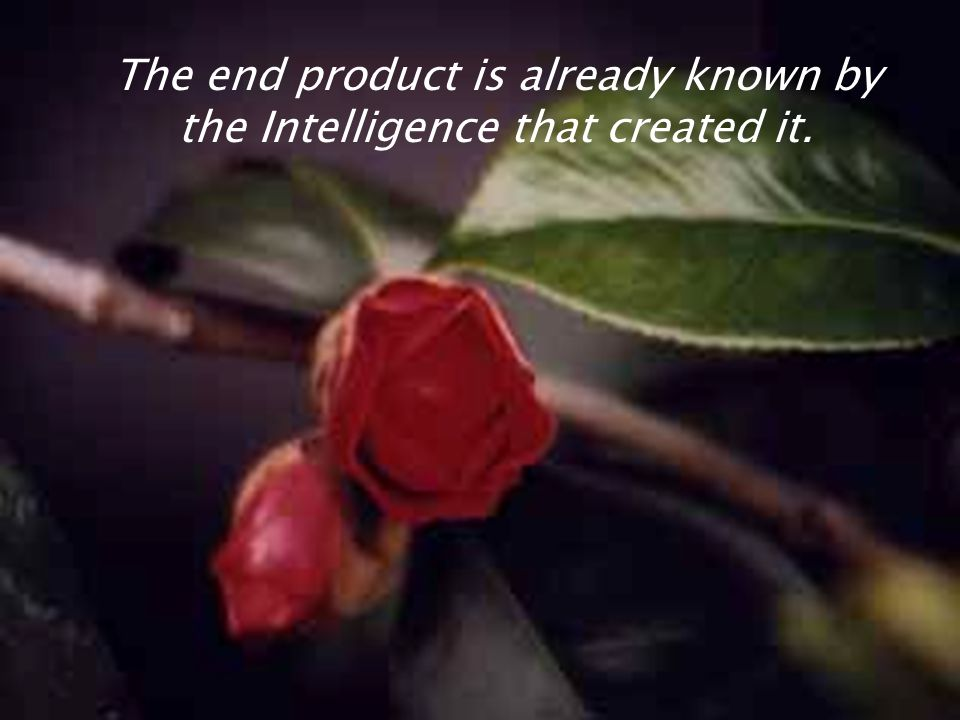 The end product is already known by the Intelligence that created it.