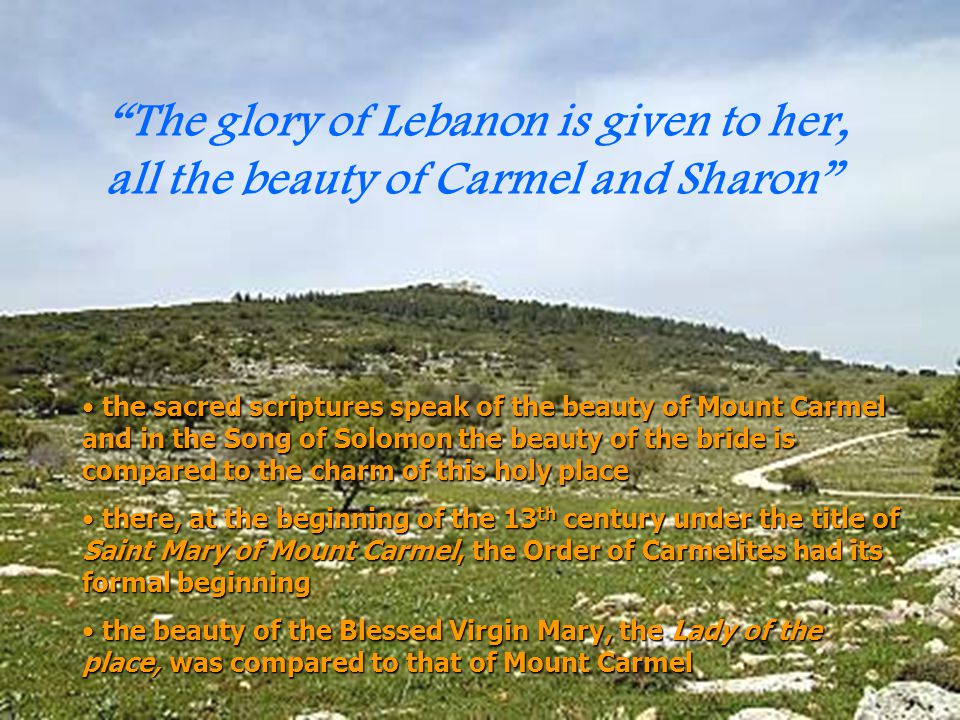 The glory of Lebanon is given to her, all the beauty of Carmel and Sharon
