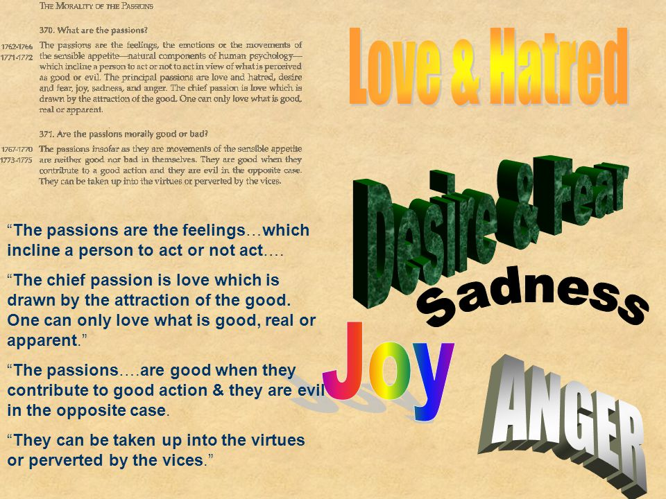 Love & Hatred Desire & Fear Sadness Joy ANGER