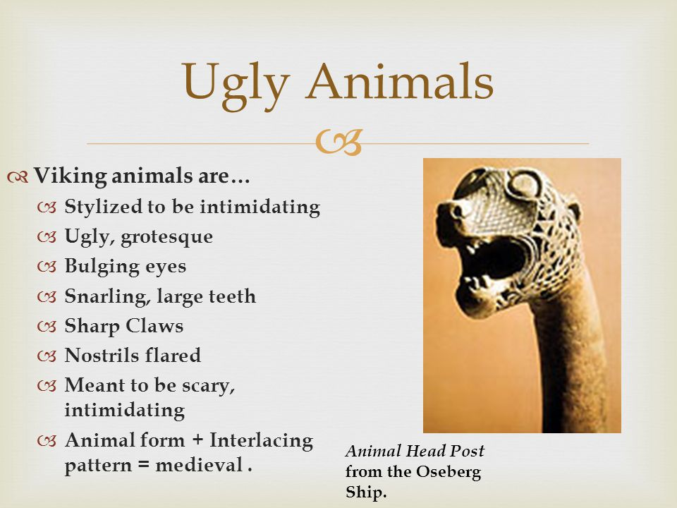 Ugly Animals Viking animals are… Stylized to be intimidating