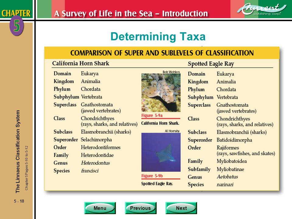 Determining Taxa The Linnaeus Classification System