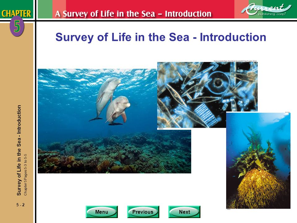 Survey of Life in the Sea - Introduction