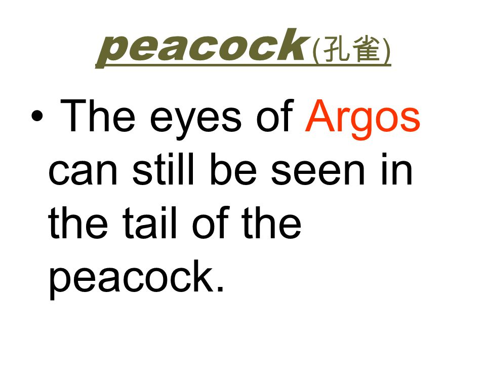 peacock (孔雀) The eyes of Argos can still be seen in the tail of the peacock.