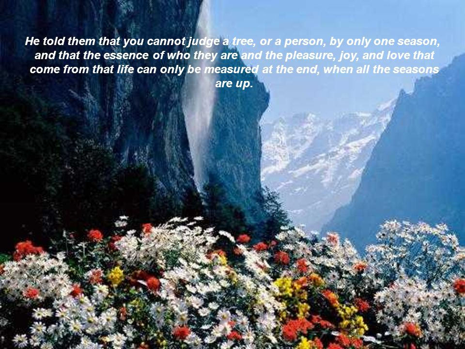 He told them that you cannot judge a tree, or a person, by only one season,