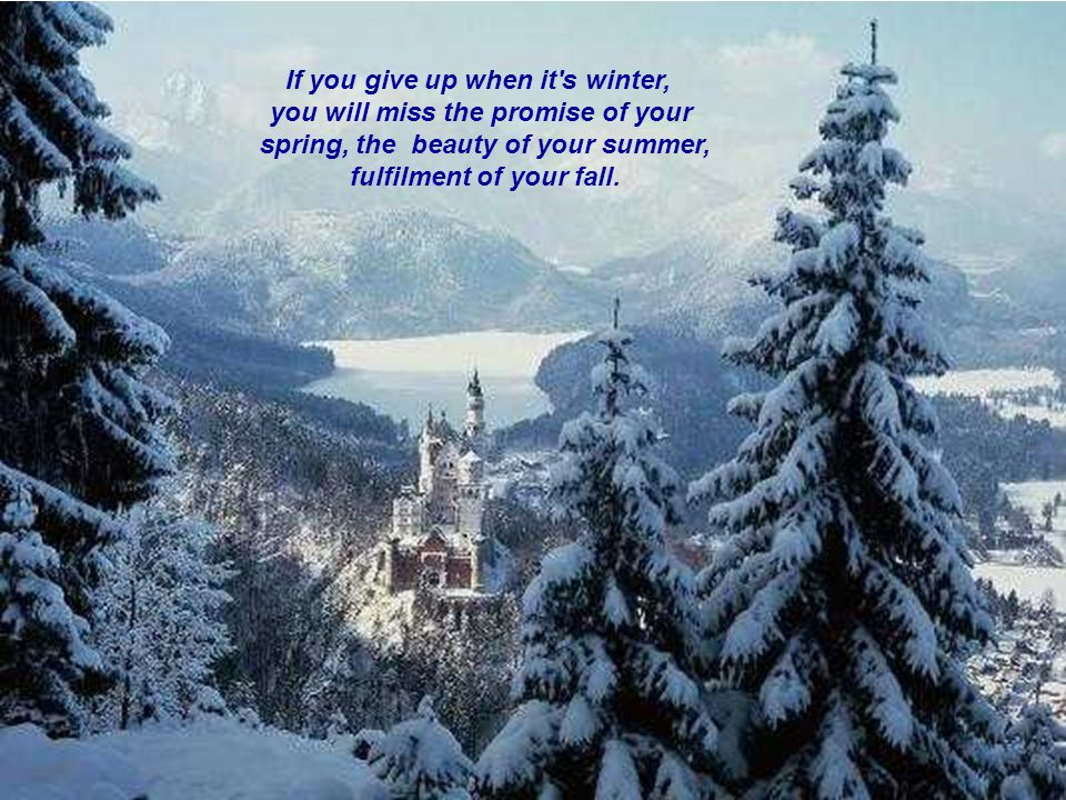 If you give up when it s winter, you will miss the promise of your