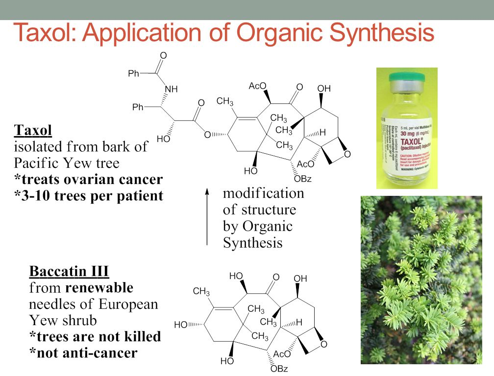 Taxol: Application of Organic Synthesis