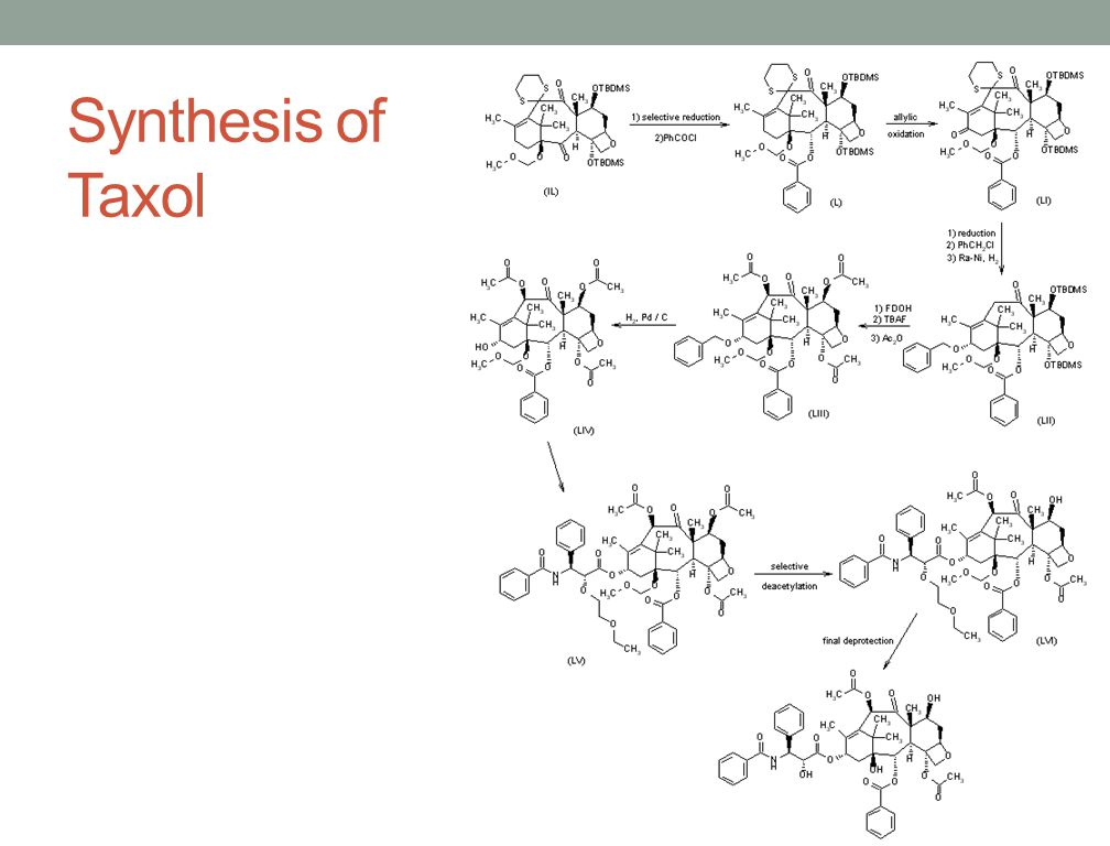 Synthesis of Taxol