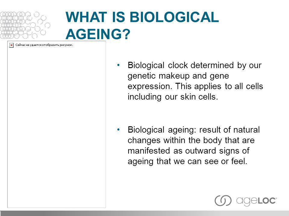 What is Biological AgEing