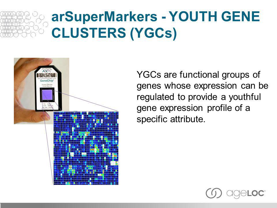 arSuperMarkers - Youth Gene Clusters (YGCs)