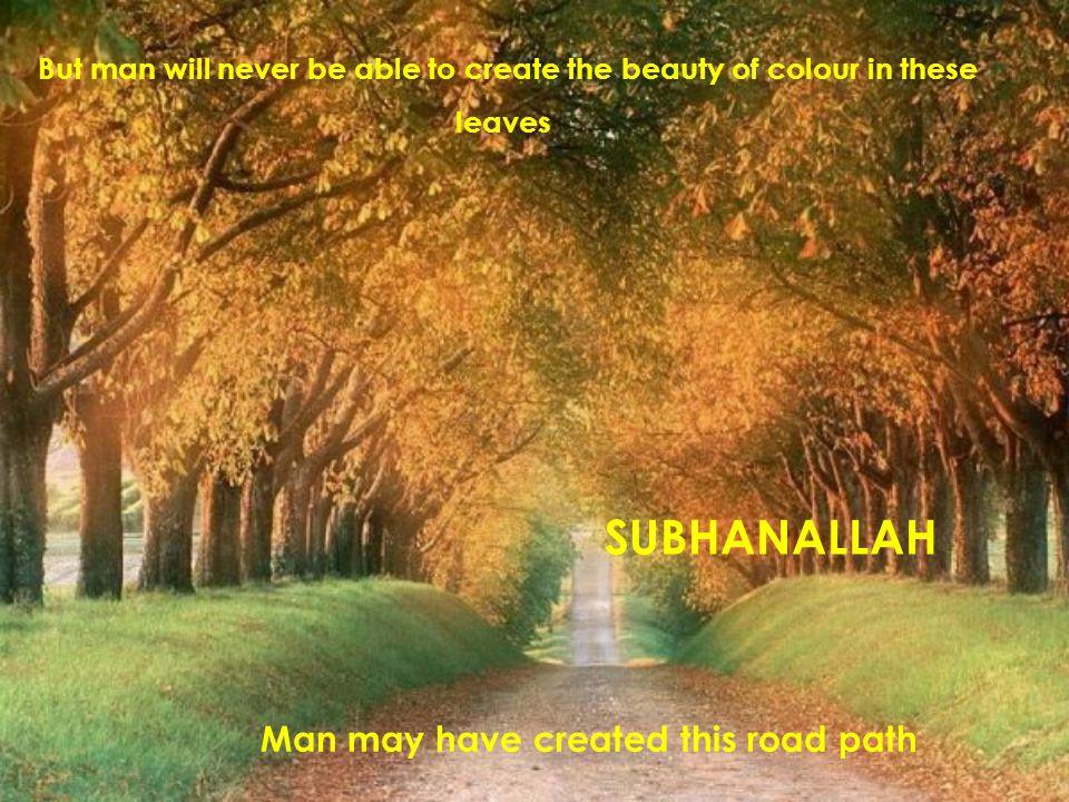 SUBHANALLAH Man may have created this road path