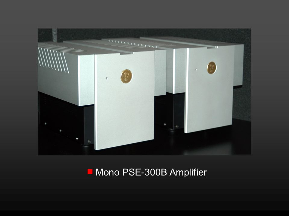 Mono PSE-300B Amplifier