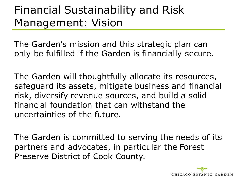 Financial Sustainability and Risk Management: Vision