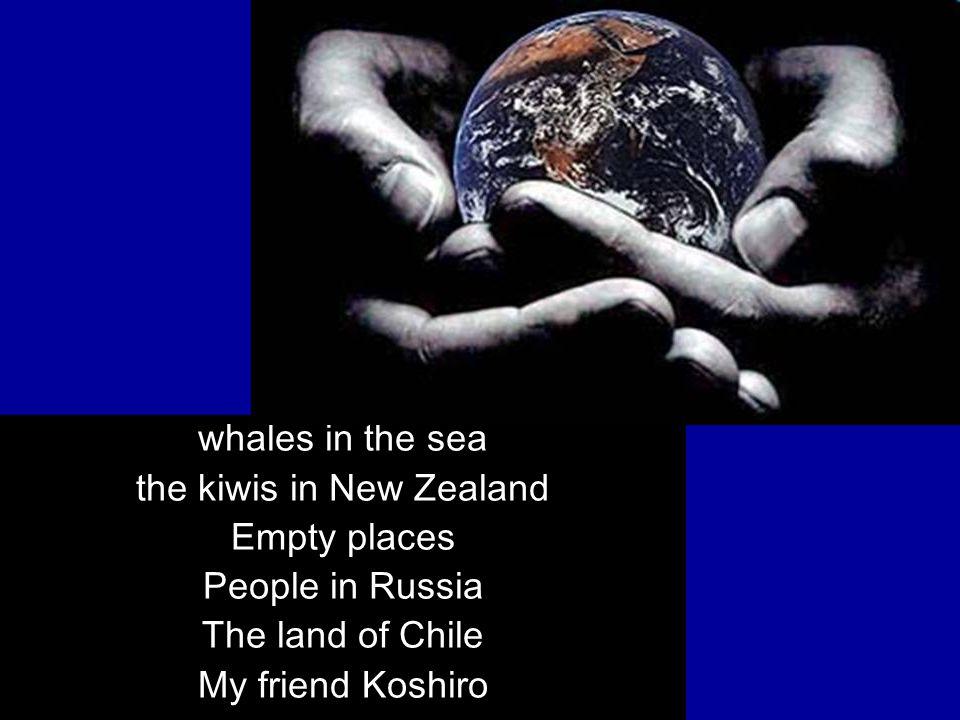 the kiwis in New Zealand