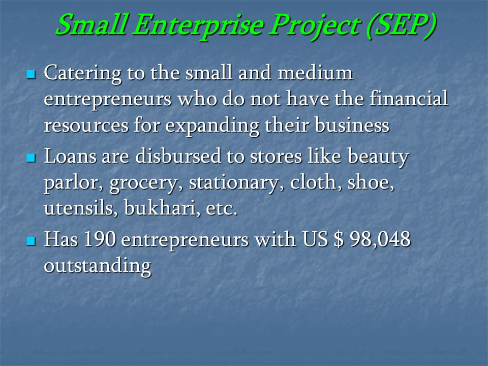 Small Enterprise Project (SEP)
