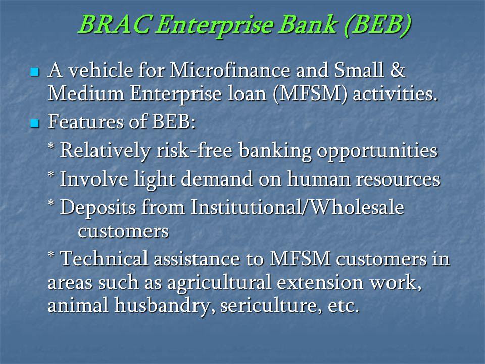 BRAC Enterprise Bank (BEB)