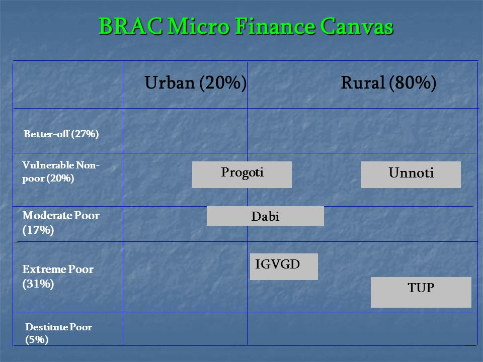 BRAC Micro Finance Canvas