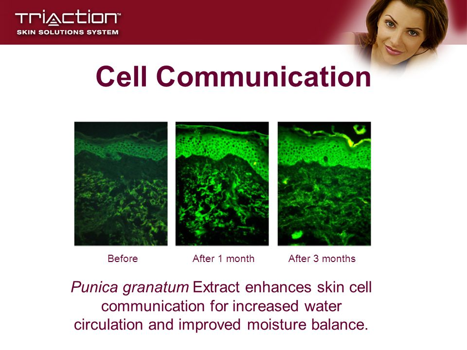 Cell Communication Before. After 1 month. After 3 months.