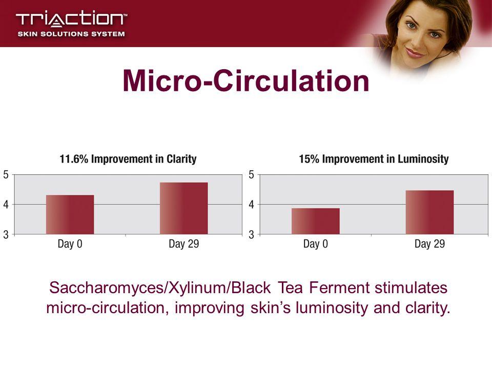 Micro-Circulation Saccharomyces/Xylinum/Black Tea Ferment stimulates micro-circulation, improving skin's luminosity and clarity.
