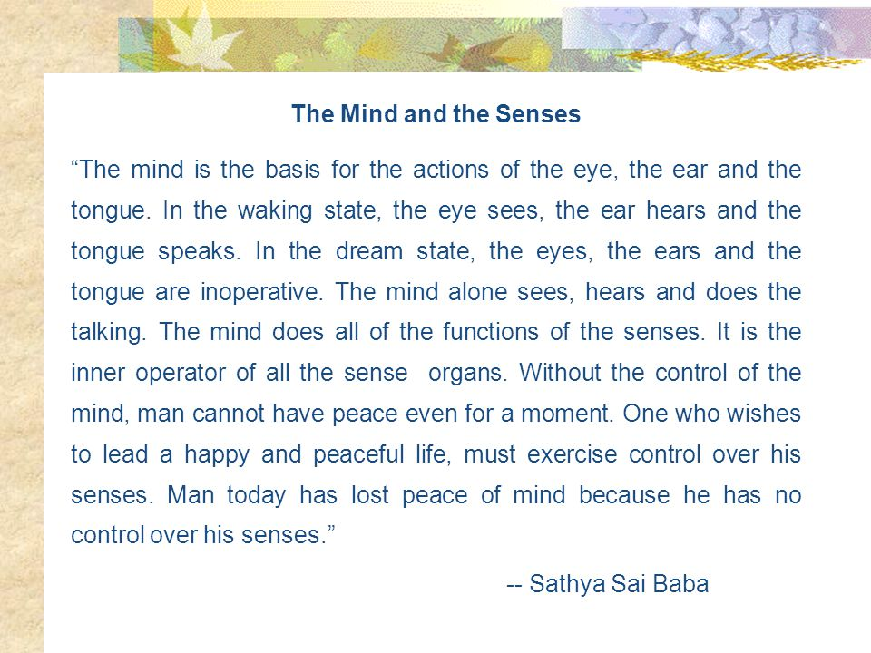 The Mind and the Senses