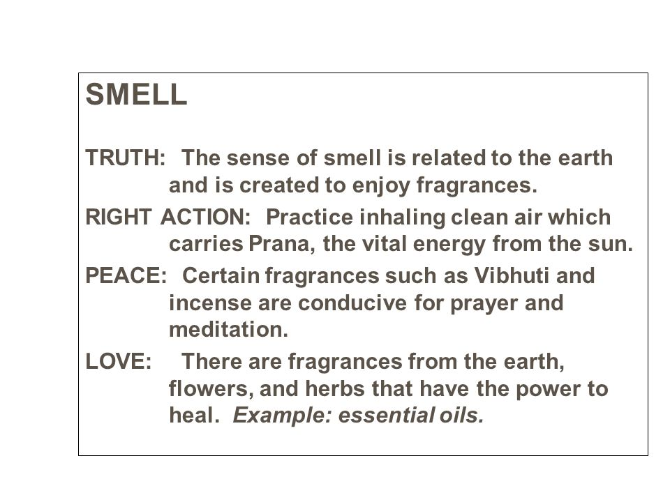 SMELL TRUTH: The sense of smell is related to the earth and is created to enjoy fragrances.