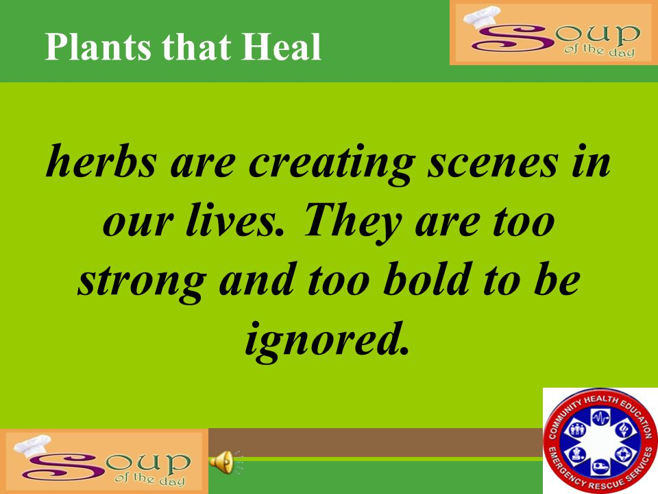 Plants that Heal herbs are creating scenes in our lives.