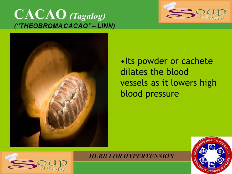 CACAO (Tagalog) ( THEOBROMA CACAO – LINN) Its powder or cachete dilates the blood vessels as it lowers high blood pressure.