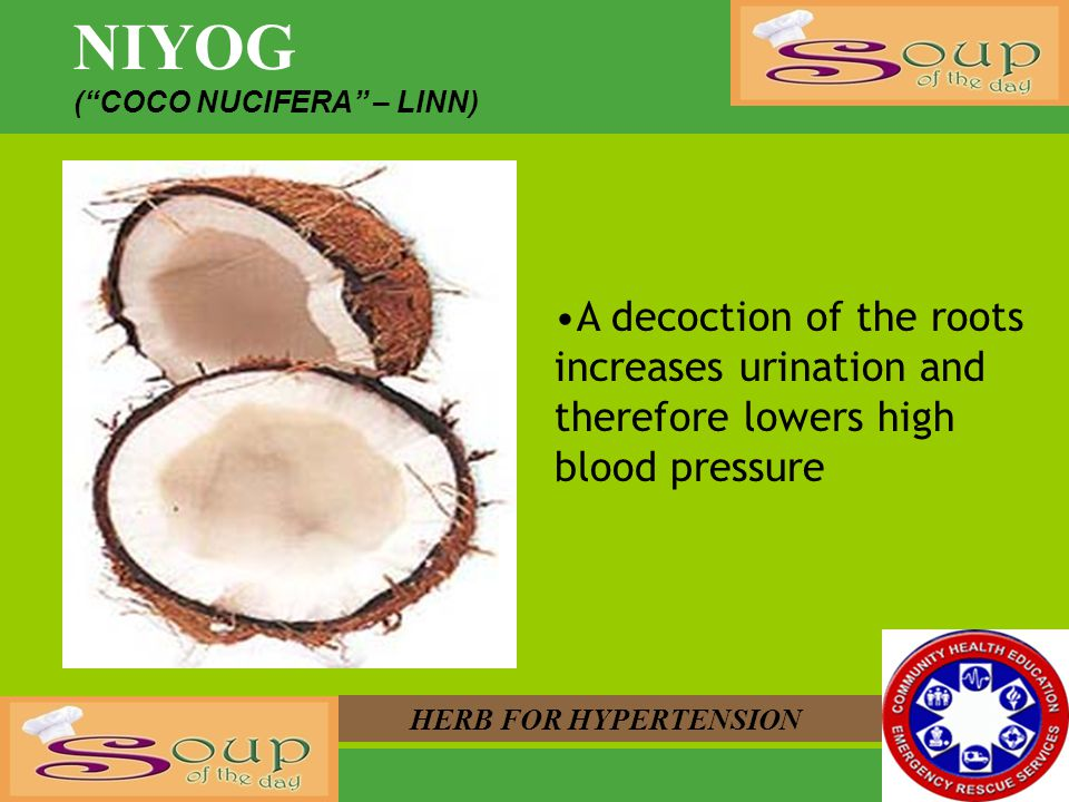 NIYOG ( COCO NUCIFERA – LINN) A decoction of the roots increases urination and therefore lowers high blood pressure.
