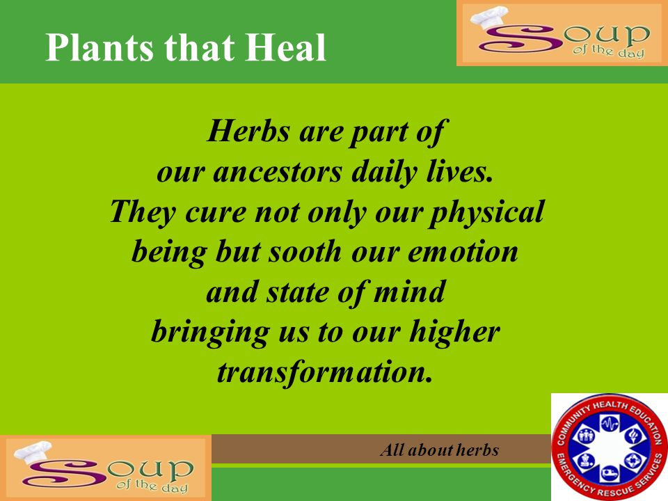 Plants that Heal Herbs are part of our ancestors daily lives.