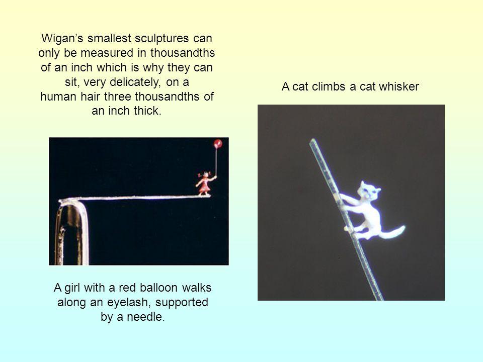 A cat climbs a cat whisker
