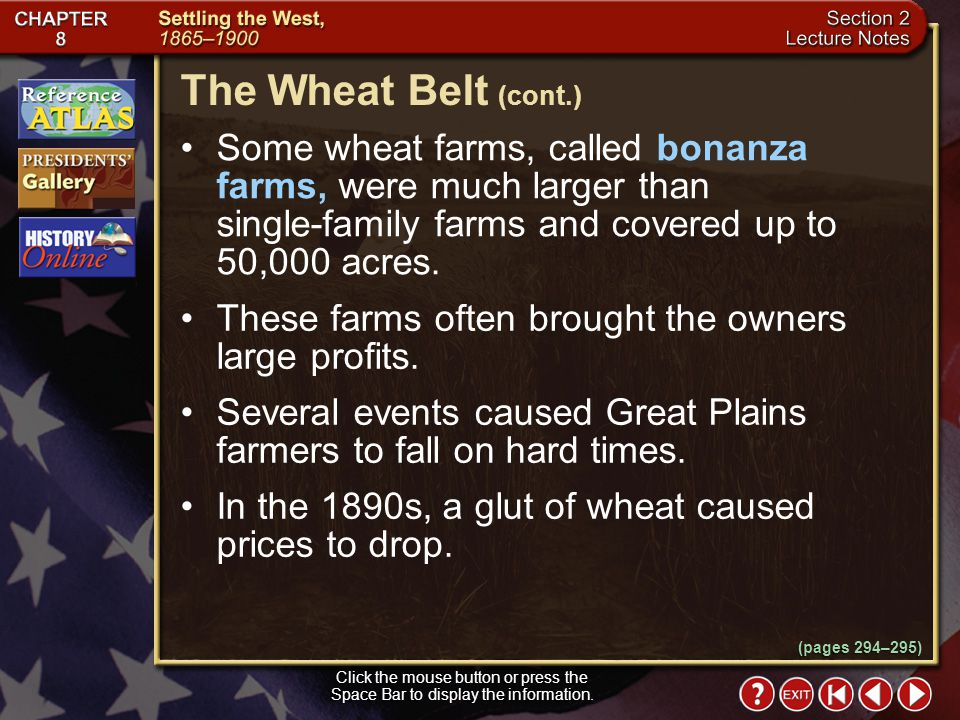 The Wheat Belt (cont.) Some wheat farms, called bonanza farms, were much larger than single-family farms and covered up to 50,000 acres.