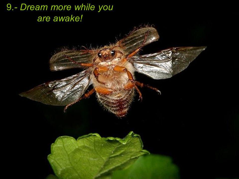 9.- Dream more while you are awake!