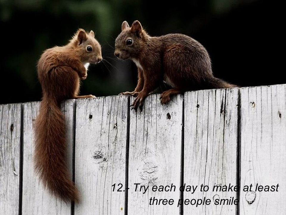12.- Try each day to make at least three people smile