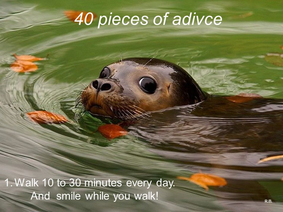 Walk 10 to 30 minutes every day. And smile while you walk!