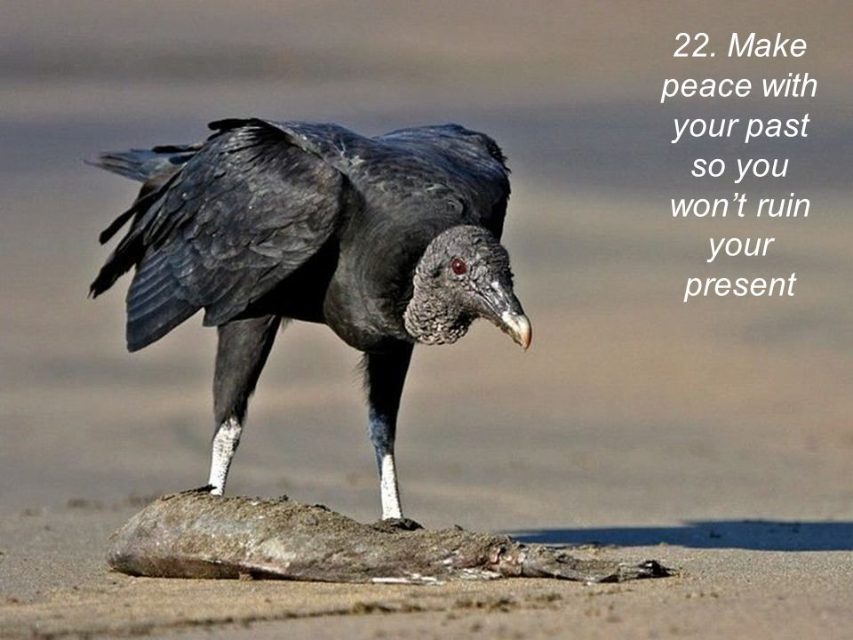 22. Make peace with your past so you won't ruin your present