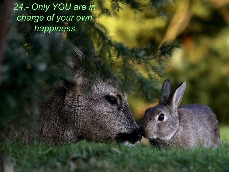 24.- Only YOU are in charge of your own happiness