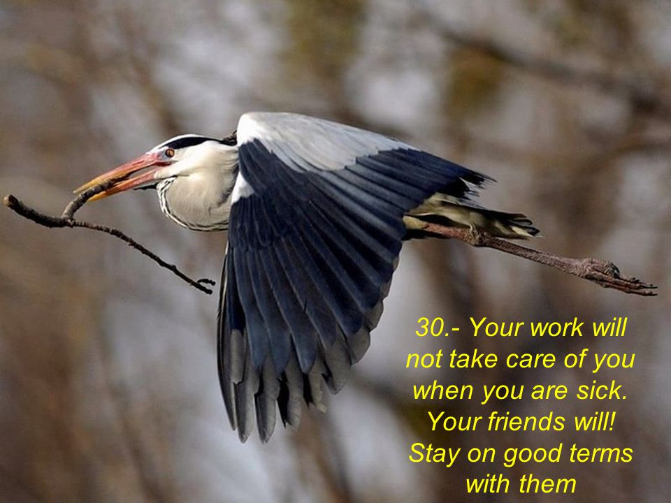 30. - Your work will not take care of you when you are sick
