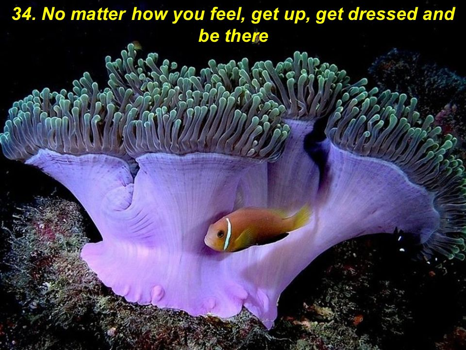 34. No matter how you feel, get up, get dressed and be there
